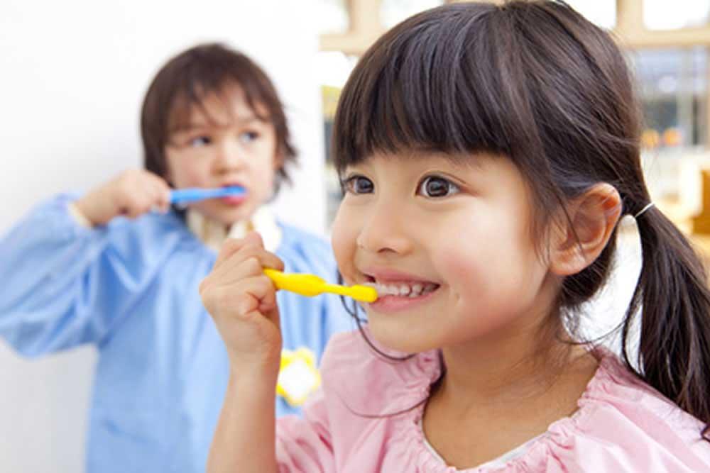 歯磨きのレッスン
